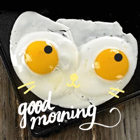 wallpaper gif good morning good morning pics gif wallpaper sportstle