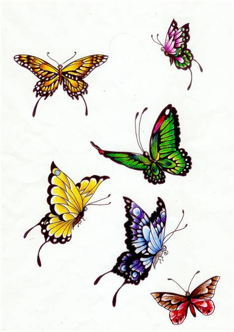 butterfly colors butterfly colors 1 by koshii on deviantart