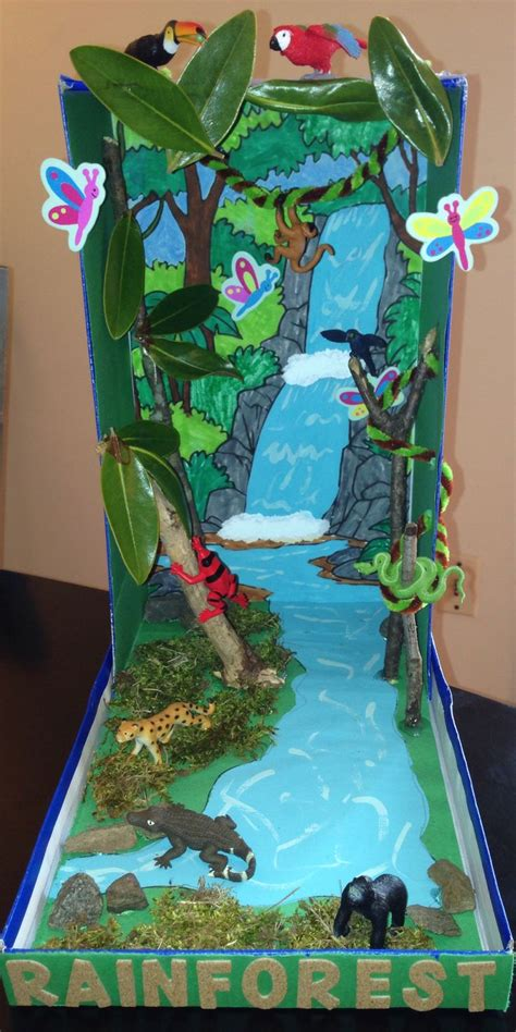 How To Make Rainforest Animals Out Of Paper - 25 best ideas about ecosystems projects on