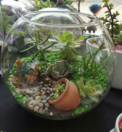 best plants for closed terrariums terrarium design extraordinary terarium plants terarium plants small terrarium plants aquarium