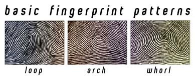 fingerprint pattern meaning all things beautiful csi more labs determining ph
