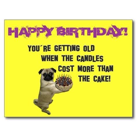 pug birthday song best 25 happy birthday pug ideas on pug birthday meme happy birthday