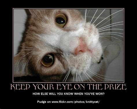 contest gallery  funny motivational poster