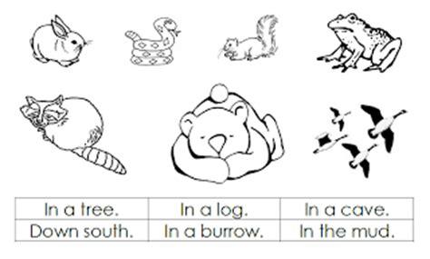Hibernation Worksheets by Hibernation Printables