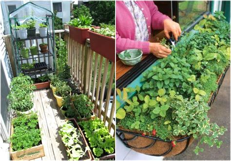 Small Balcony Garden Ideas Pictures The Garden Inspirations Small Apartment Balcony Garden Ideas
