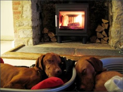 Cost To Add A Wood Burning Fireplace by Cost Installing Wood Burning Stoves Best Stoves