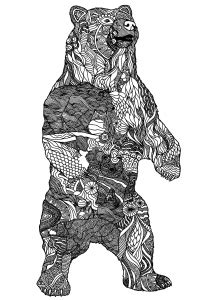 bears coloring pages  adults