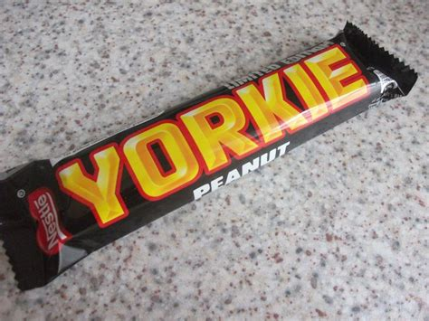 can yorkies eat peanuts the 25 best yorkie chocolate bar ideas on yorkie chocolate recipes sour