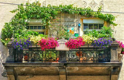 gardening balkon gardening auf balkonien myinnsbruck