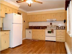 Plywood Kitchen Cabinet Best Plywood For Kitchen Cabinets Alkamedia