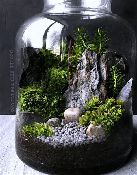 woodland forest scene terrarium terrarium woodland forest and glass vessel
