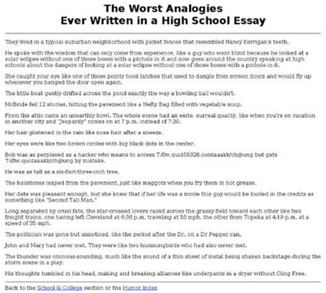 High School Essay Help by Free My High School Experience Essay Exle Essays