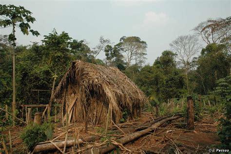 amazon tribe brazilian indians survival international