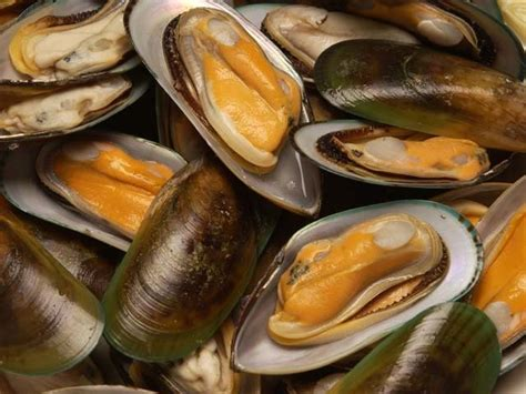 green lipped mussel for dogs mussels so my kiwi roots aotearoa