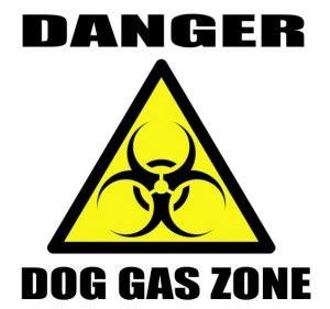 puppy gas dogs and flatulence walker