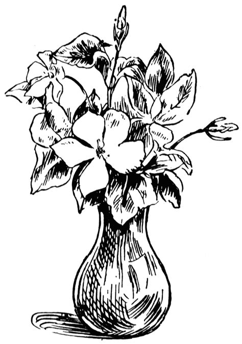 Drawing Picture Flower Vase by Vase Of Flowers Clipart Etc