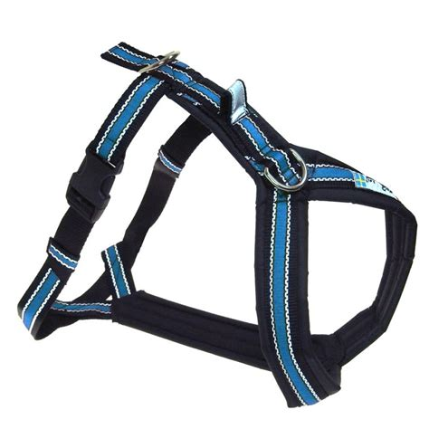 padded harness a padded shoulder harness great for canicross bikejoring and walking reflective