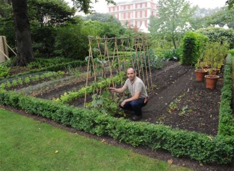 Not Got A Vegetable Patch Take Over Your Neighbour S As How To Do A Vegetable Garden