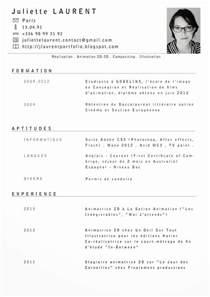 Cv Template Francais Curriculum Vitae Example En Francais