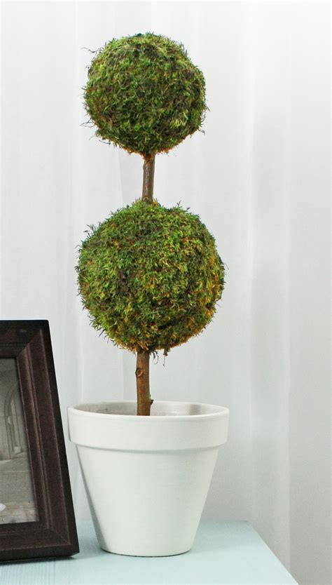 topiary diy moss topiary made with styrofoam balls diy projects