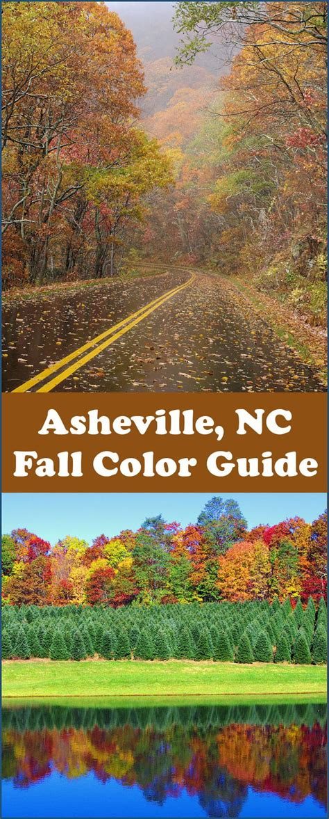 asheville fall colors 17 best images about fall color in nc mountains on