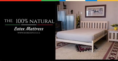 Chemical Free Crib Mattress Chemical Free Mattress Talalay Mattress Photo Albums 100 Chemical Free Sofas