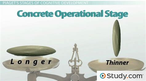 Performing Arts Resume Examples by Jean Piaget S Stages Of Cognitive Development Video
