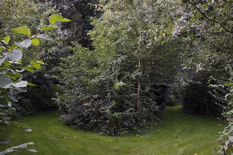 tuinen vranckx ecologische tuin elegant tuinen vranckx with ecologische