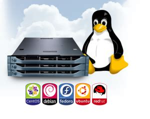 best linux hosting top 5 cheap linux vps web hosts to try realiable fast