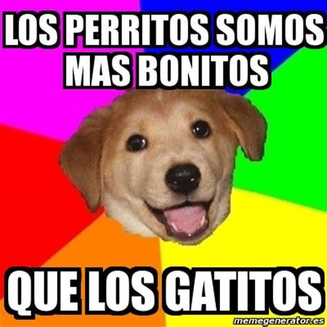 imagenes de memes bonitos meme advice dog los perritos somos mas bonitos que los