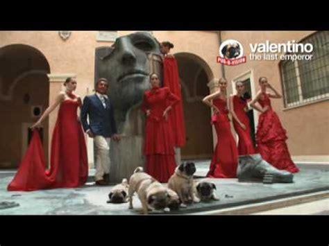 valentinos pugs valentino s pugs