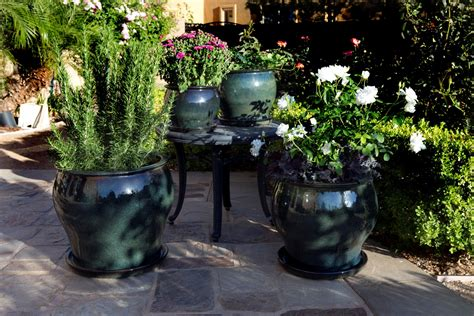 creative containers for gardening creative container gardening for beginners
