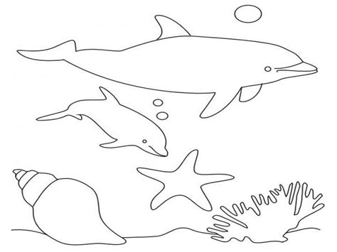 coloring pages of dolphins dolphins coloring pages realistic realistic coloring pages
