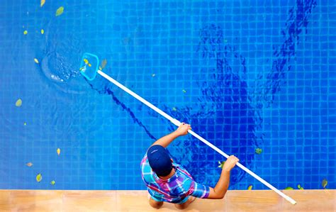 pool maintenance pool service fort lauderdale daily and weekly pool
