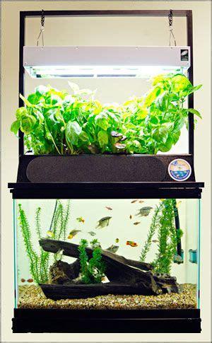 mini aquaponics images  pinterest aquaponics
