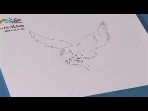 how to learn to draw an eagle