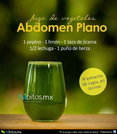 Plano Detox by Abdomen Plano Detox Juice Detox And
