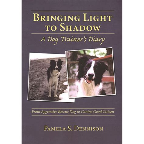 lights to a shadow book bringing light to shadow ebook