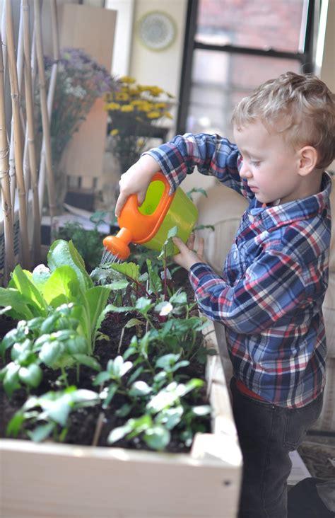 indoor gardening  city kids gimme  good stuff