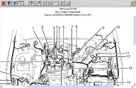 lexus es300 engine diagram. lexus. wiring diagram site