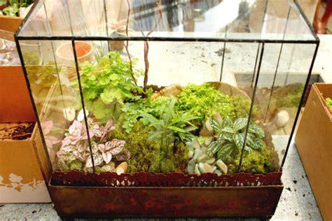 Fish Decor For Home Diy Terrariums With Terrain