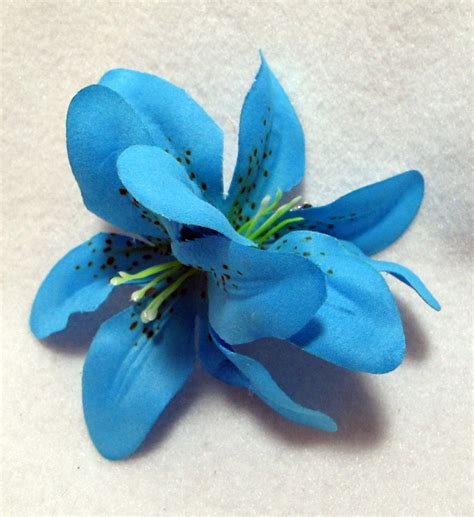 blue lilies flowers www pixshark com images galleries