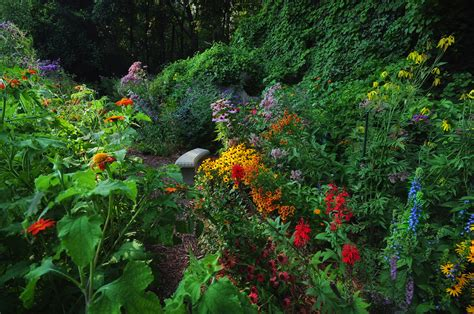 John S Butterfly Garden In Michigan Finegardening Butterfly Flower Garden