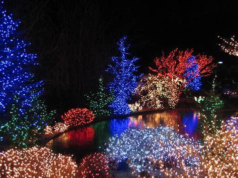 Pine tree outdoor lighting mouthtoears com