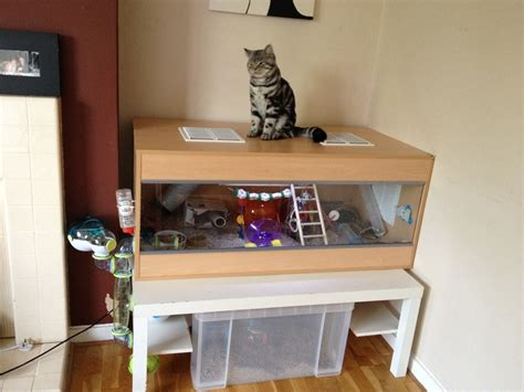 cat proof ikea 13 best images about cat proof mouse home for fi s new