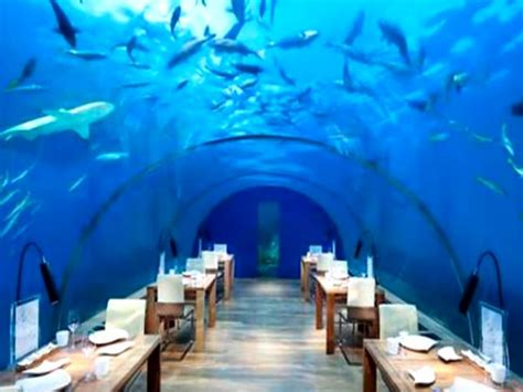 Best Kitchen Interiors 10 crazy themed restaurants in india for food amp fun