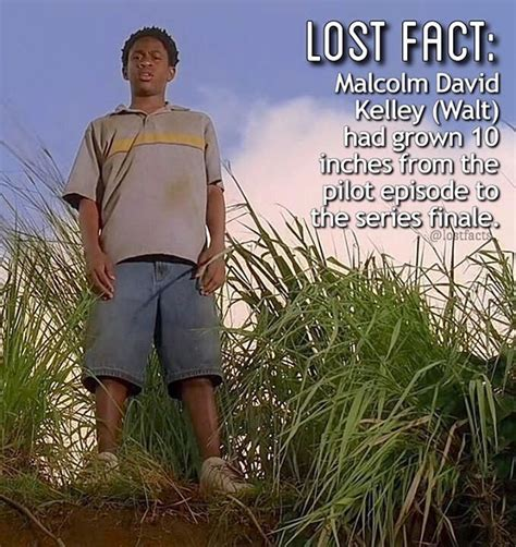 Lost Memes Tv - 347 best lost images on pinterest lost memes lost and movie