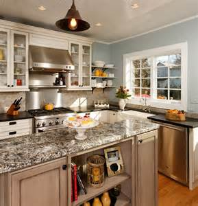 Contemporary White Kitchen Cabinets quot modern quot country kitchen traditional kitchen dc