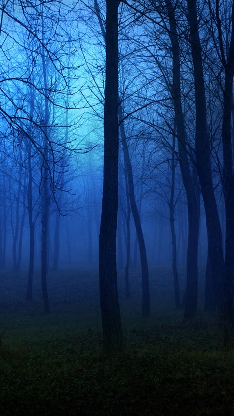 creepy forest night fog iphone  wallpaper hd   iphonewalls