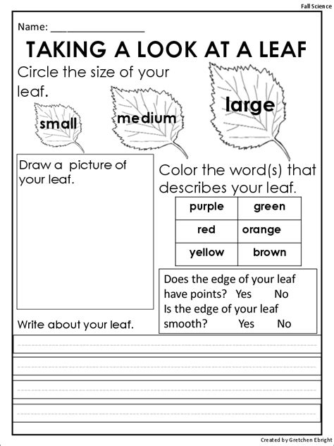 printable observation games 10 best images of fall leaves worksheets pile of fall